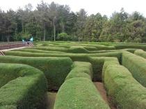 maze park 2